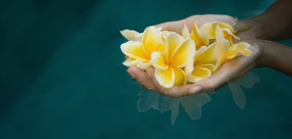 Flowers - Spa in Ubud, Bali spa packages, treatments, massage, facial, lulur