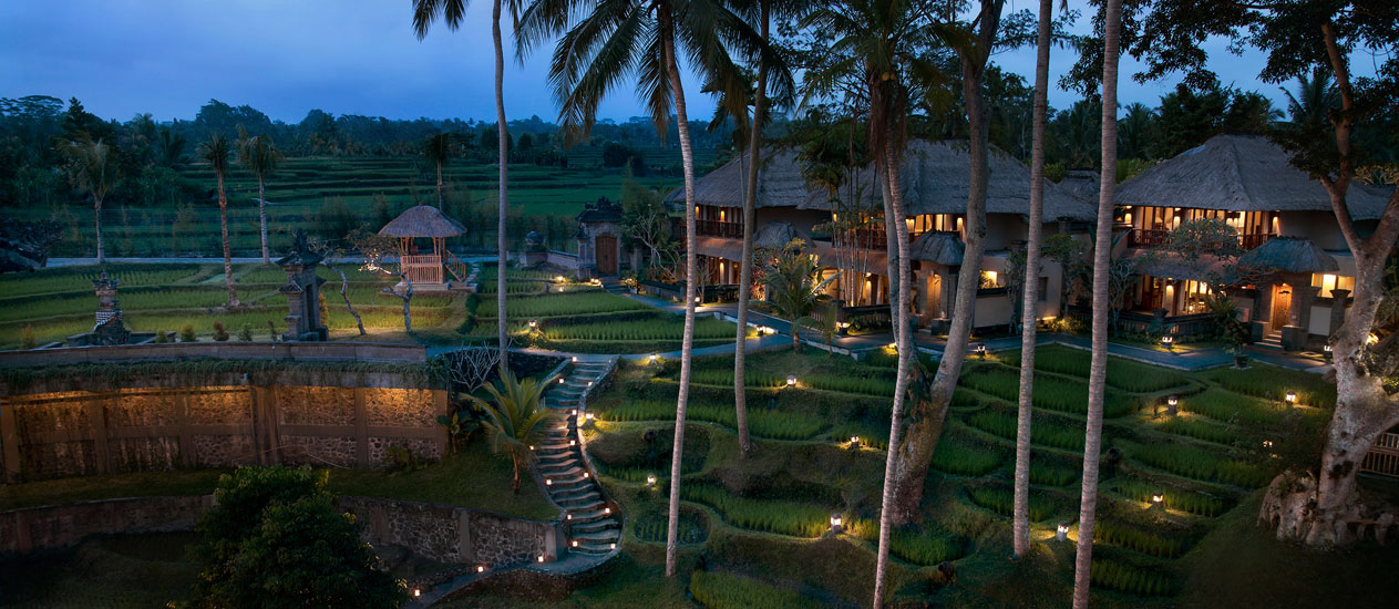 Rice Paddies view - Kamandalu Resort and Spa, Ubud, Bali - Accommodation, villas, resort in Ubud