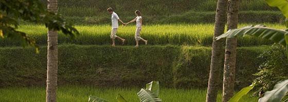 Village and Rice Paddy Walk - Ubud Experience by Kamandalu Ubud