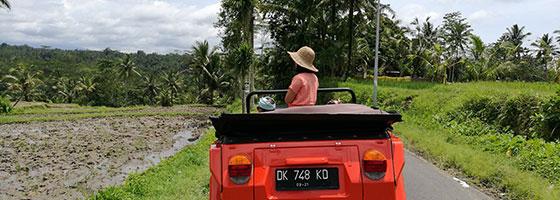 Tegallalang Volkwagen Tour by Kamandalu Ubud