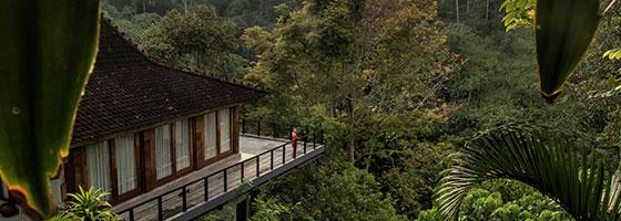 Rumah Yoga - Ubud Experience by Kamandalu Ubud
